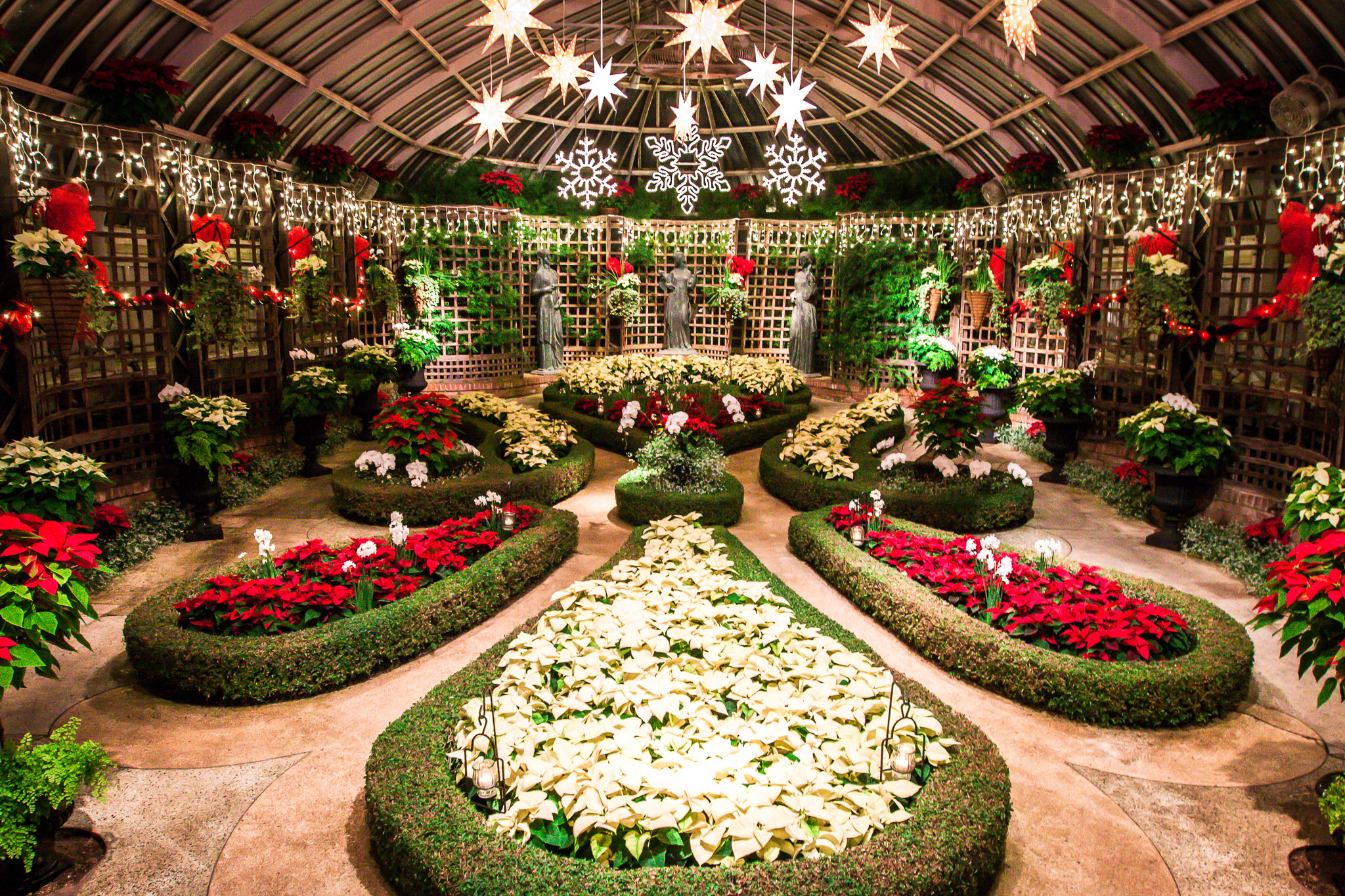 Phipps Conservatory Winter Flower Show and Light Garden - Eat Work ...